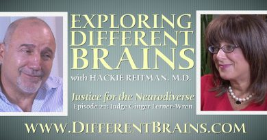 justice for the neurodiverse judge ginger lerner wren