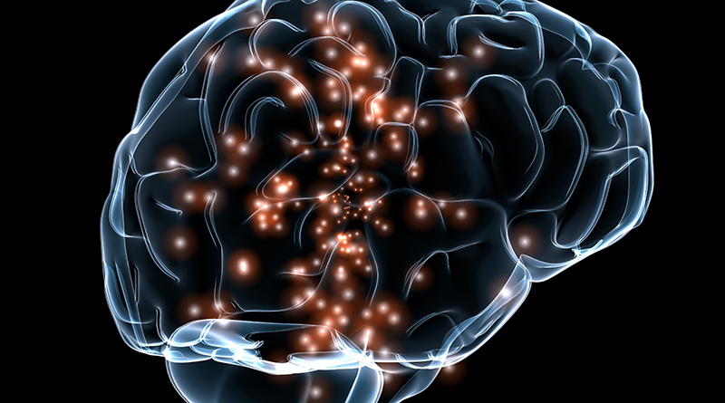 Neuroscientists Awarded $1m For Discovering Plasticity In The Brain