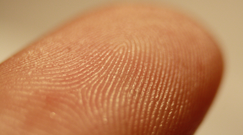 Fingerprint Detail On Male Finger