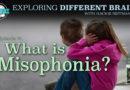 What Is Misophonia? with Dr. Jennifer Jo Brout, founder of Duke University's Sensory Research Program   EDB 74