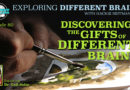 Discovering the Gifts of Different Brains, with Dr. Gail Saltz | EDB 80