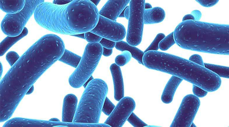 Probiotics May Help Treat Bipolar Disorder