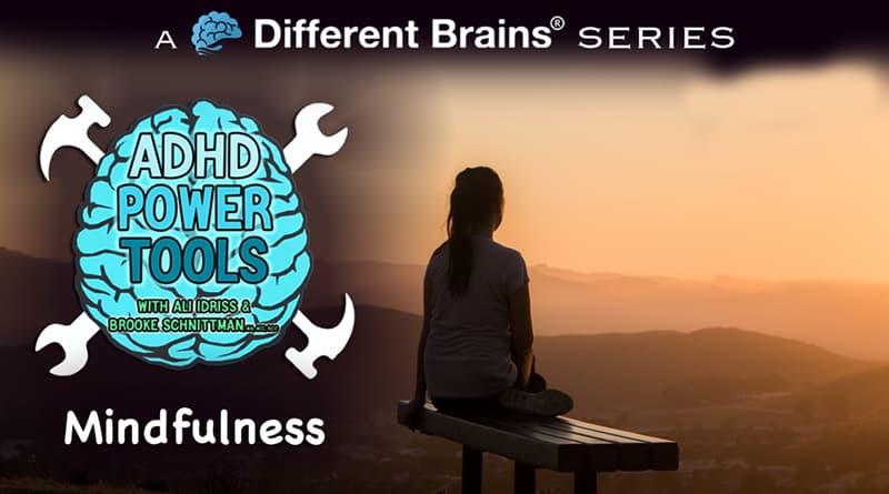 Mindfulness | ADHD Power Tools W/ Ali Idriss & Brooke Schnittman
